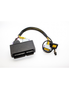 Audi RS4 B5 2,7 BiT to EMU Plug&Play adapter
