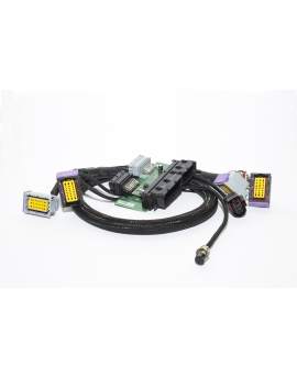 Mini Cooper S r53  to EMU Plug&Play adapter